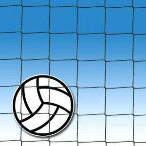 Fillet de Volley-ball - Référence 4510